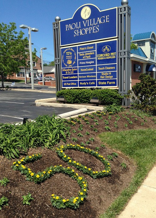 flowers for 50th anniversary Paoli