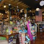 Concord Pet Store Paoli