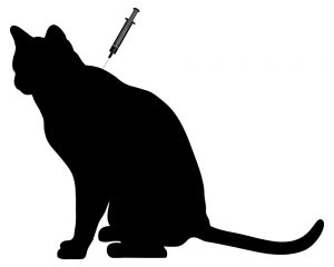 cat vaccines