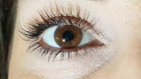 Eye with really good eye lashes