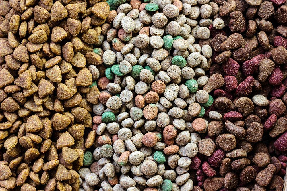 pet food samples